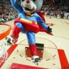 A Day In The Life Of An NBA Mascot