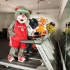 Houston's Furriest Mascots