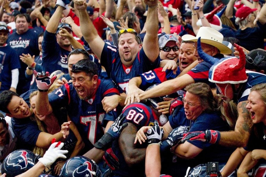 Image result for houston texan fans