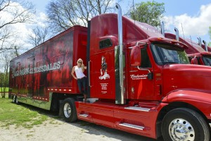 The Blonde Side's photoshoot with the Budweiser Clydesdales team